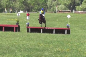 Icabad Crane Moves Up to Novice at Fair Hill