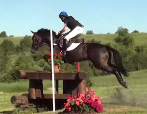 Mighty Nice Finishes Second in Virginia CIC2*