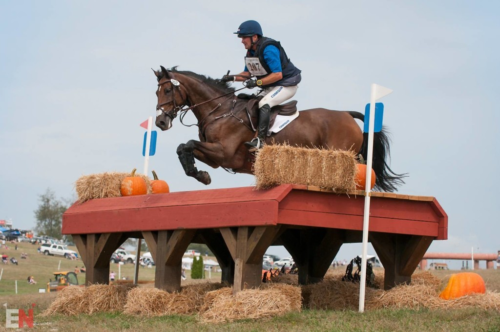 Mr. Candyman. Photo by Leslie Threlkeld/Eventing Nation.