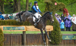 Mighty Nice Nominated for 2016 USEF International Horse of the Year