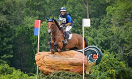 Fernhill Revelation, I'm Sew Ready & Z Finish Top 10 at Millbrook